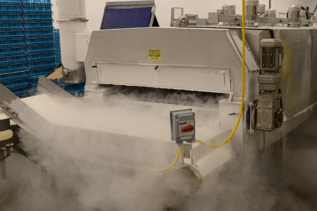 Cryogenic food freezing production system.