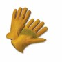 PIP® Medium Gold Premium Grain Cowhide Unlined Drivers Gloves
