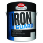 Krylon Industrial 1 Gallon Can Gloss Gloss Black Iron Guard® Water-Based Acrylic Enamel