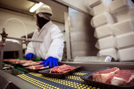 Food industry professional monitors yet--to-be-wrapped steaks on a meat packaging line.