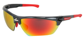 MCR Safety® Dominator™ DM3 Gray And Red Safety Glasses With Red Mirror/Polarized/Hard Coat Lens And Thermal Plastic Rubber (TPR) Temple (Lead time for this product may be longer than normal.)